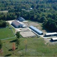 Piper Ridge Horse Farm and Horsemanship Clinics