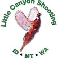 Little Canyon Shooting