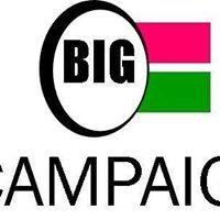 The BIG Campaign