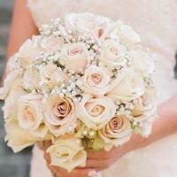 Bloomed: Fine Floral Design