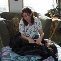Wags for Wellness K-9 Massage & Therapy