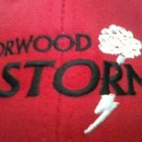 Norwood & District Minor Softball Association