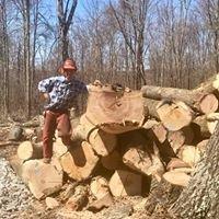 Hibbs Logging