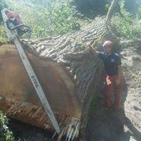 Cascade Climber Tree Service