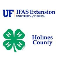 UF IFAS Extension Holmes County 4-H
