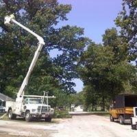 Bucks Tree Service