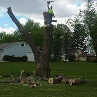 TLC Tree Service