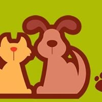 Bow Wow & Meow Pet Sitting & Daycare