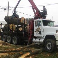 Bailey Tree Service