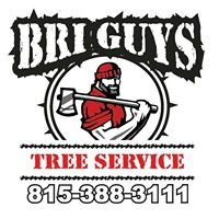 Bri-Guy's Tree Service