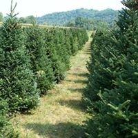 Eppley Tree Farm