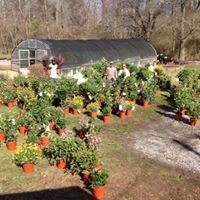 Roberts Nursery and Landscaping