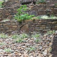 Simply Stone
