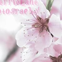 CherrieLane Photography