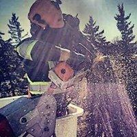 Gontree Tree Service