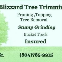 Blizzard Tree Trimming