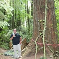 Soles Tree Service, Inc.