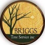 Briggs Tree Service