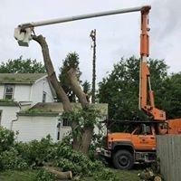 Bradbury Tree Service