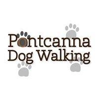 Pontcanna Dog Walking