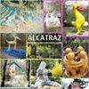 alcatraz.it