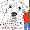 Amici per le zampe Perugia