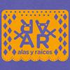 Alas y Raíces MX