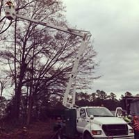 Precision Tree Removal of Fayetteville