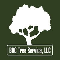 BDC Tree Service LLC