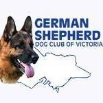 German Shepherd Dog Club of Victoria - Bendigo branch