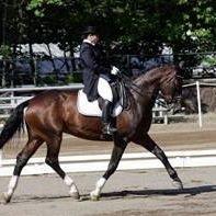 Sharon Ortepio Hunterdon and Somerset County Horse Farms