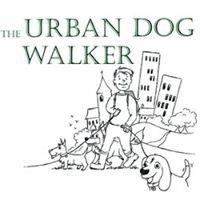 The Urban Dog Walker