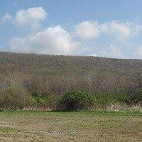 Schooley's Mountain