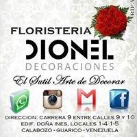 Dionel Decoraciones