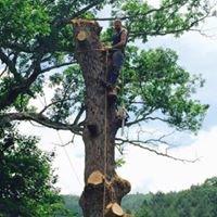 Underwood Tree Care