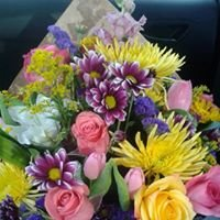 All Occasions Florist