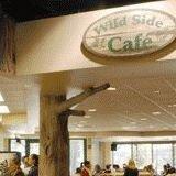 Wild Side Cafe