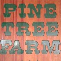 Pine Tree Farm - Landscape and Christmas Trees