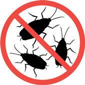 Idaho Pest Solutions