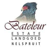 Bateleur Estate