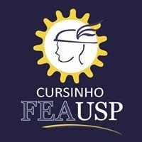 Cursinho FEA USP