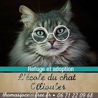 Refuge / Adoption L'école du chat - 83