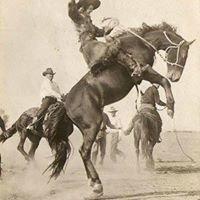 Nyssa Nite Rodeo