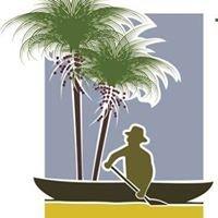Congresso de Educação em Saúde da Amazônia - COESA