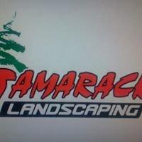 Tamarack Landscaping