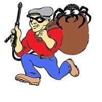 The Bugnappers Pest Control and Lawn Care