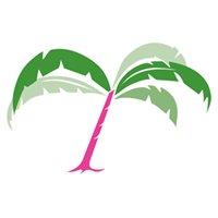 The Palm Tree Boutique Denton