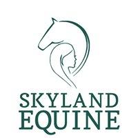 Skyland Equine