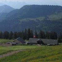 Alp Chäserenholz