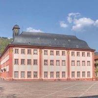 Heidelberg Uniplatz